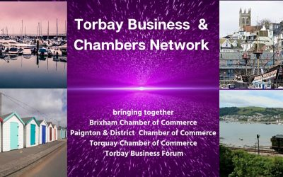TBCN – Virtual Networking Event